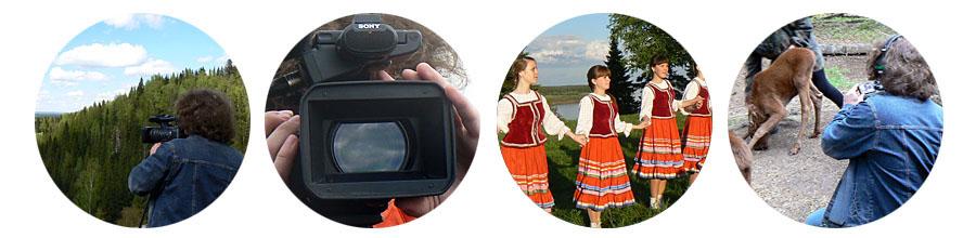 vitema.ru